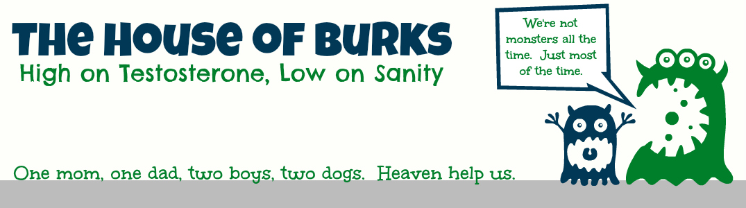 The House of Burks